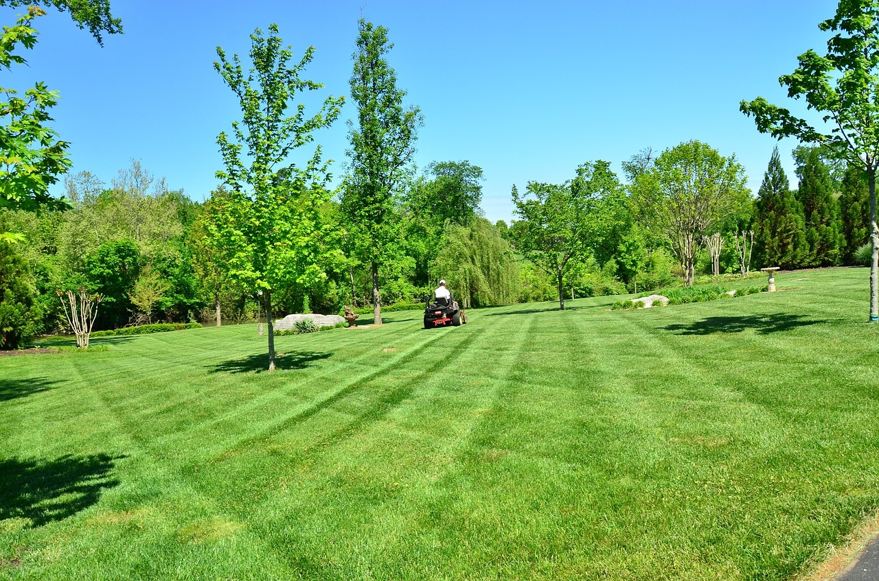 Top Risks For Landscaping Companies